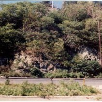 Image of Color photo of cliff rocks on River St. (Sinatra Drive) just below Castle Point, Hoboken, September 24, 1989. - Print, Photographic