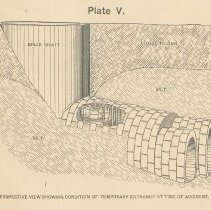 Image of Plate 5 detail