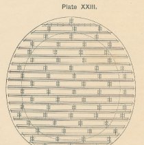 Image of Plate 23 detail