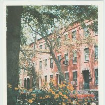 Image of Gallagher Postcard: #5. 11th St. [Hoboken] between Garden St. & Park Ave. Photo by Brian Gallagher. - Postcard