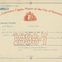 Image of license no 13, typical