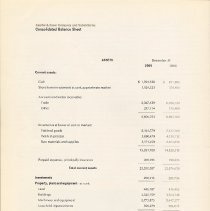Image of pg [16]: Consolidated Balance Sheet