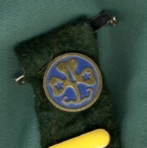 Image of detail of badge with pins