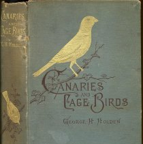 Image of Canaries and Cage-Birds. - Book