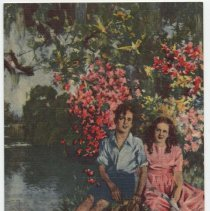 Image of Postcard: View of Original Painting by Howard Chandler Christy, The Stephen Foster Memorial, Suwannee River, Florida. No date, 1949+. - Postcard