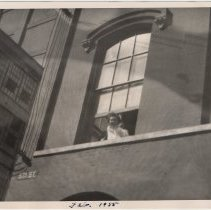 Image of Digital image of B+W photo of Paul Millenthal leaning out a second story window, Stevens Hoboken Academy, Hoboken, February, 1955. - Print, Photographic