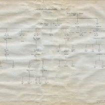 Image of Jackson & Sylvester family genealogy prepared by Gerald Spiro, Nov. 1962