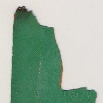 Image of laminate sample