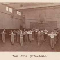 Image of pg [50] photo The New Gymnasium
