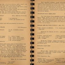 Image of pp 2-3: typical pages of typewritten text