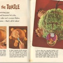 Image of pp [10-11] Tortie the Turtle