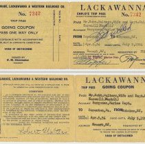 Image of Pass / ticket: D.L.& W. R.R. Employee Trip Pass; Robt. Walters & family; R/T Hoboken-Scranton, issued 1954. - Ticket, Transportation