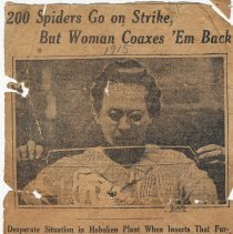Image of Newsclipping: K&E spiders on 'strike' at Hoboken factory, NY Evening Mail, ca. August 21 or 22, 1915. - Clipping, Newspaper