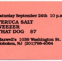 Image of 04 Veruca Salt; Weezer; That Dog