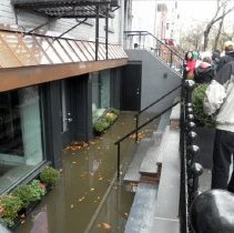 Image of Color photos, 3, of flooding damage at The Fig Tree, Park Avenue between 3rd & 4th Sts., Hoboken, Oct. 30, 2012.  - Photograph