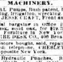 Image of Chesley classified ad: New York Herald, March 18,1894