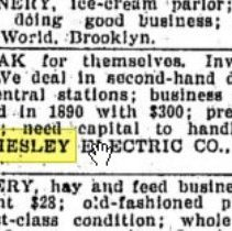 """Image of Chesley ad under """"Business Opportunities""""; The World, New York, June 7,1896"""