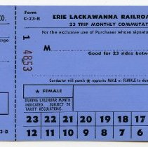 Image of 23 trip ticket blank