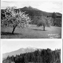Image of 2005.136.2 - Postcards