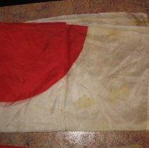 Image of 2008.31.4 - Flag