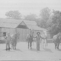 Image of 1978.24.8 - Holje Ranch