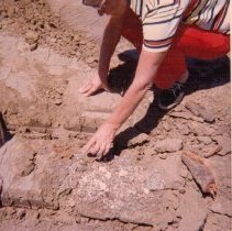 Image of 1982.21.32 - Man inspecting a Wappo burial site