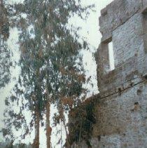 Image of 1982.57.7 - North wall of Rotunda at Napa Soda Springs
