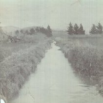 Image of 1988.22.14 - Field and irrrigation ditch at Soscol Ranch