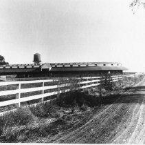 Image of 2002.43.26 - Spreckles Stock Farm