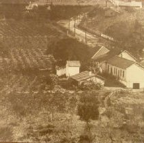 Image of 2011.2.139 - Napa Valley Vinyard