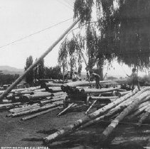 Image of 2002.43.181 - Shipping Poles