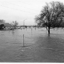 Image of 1986.1.7 - Pearl and Tulocay Sts During the 1986 Flood