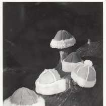 Image of 2000.29.28 - Leather Hats from Sawyer Tannery