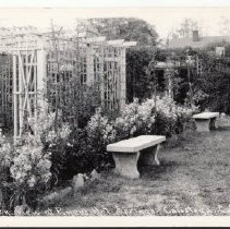 Image of Postcard of the garden area at Piner's Hot Springs