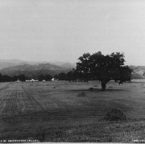 Image of 2002.43.287 - Farm field and barns in Berryessa Valley