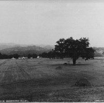 Image of 2002.43.288 - Farm field and barns in Berryessa Valley