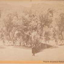 Image of 2015.35.15 - Stereoscope of guests at White Sulphur Springs
