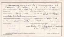 Image of Marriage License of: Abbey, Edward and Parthree, Anna B.                                                                                                                                                                                                   - 2017.102.00005