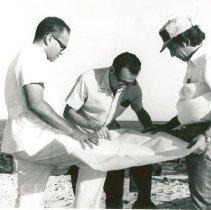 Image of Dr. Onefre Lopes Da Silva, Jr, Admiral Tertius Rebello, Sergio Brito