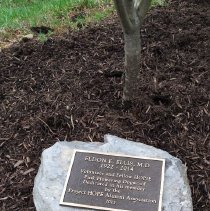 Image of Stone laid for Eldon Ellis, MD
