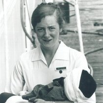 Image of Nurse in Jamaica Voyage IX.