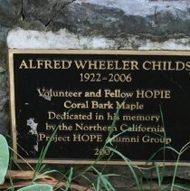 Image of A tree planted near Carter Hall in memory of Al Childs