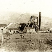 Image of Little White Ash Mine with donkeys