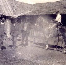 Image of Barns and Crew at the Tripp Ranch