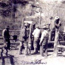Image of Barns and Crew at Elk Meadows Ranch
