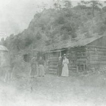 Image of Horse and buggy in front of a cabin