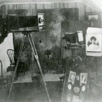 Image of Koch Studio Golden