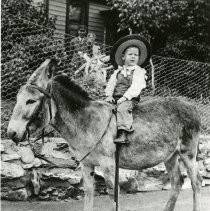 Image of Young Clarence Koch on donkey