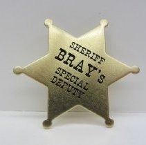 Image of Bray political campaign badge