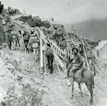 Image of Mule train to Silver Plume